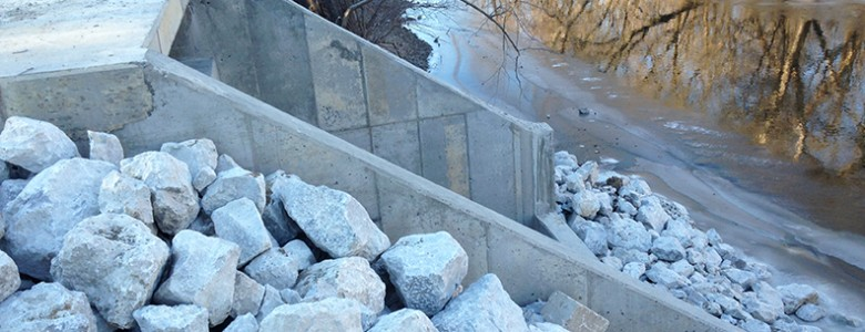 River Forest_0435 (web)